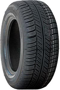 Шины Michelin Energy MXT